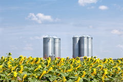 Farm grain silos Stock Photography