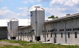 Farm for growing pigs. Chortkiv - Ternopil - Ukraine - July 4, 2016. The farm for pig breeding is equipped with a hopper for feeding fodder in the village of Royalty Free Stock Photography