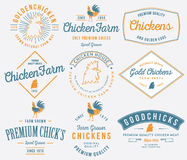 Farm grown chicken meat colored Stock Image