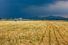 Farm after harvest Stock Image