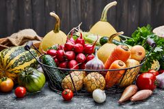 Farm harvest vegetables with spicy herb spice. And garden inventory Rural still life on grey concrete surface in rustic style royalty free stock image
