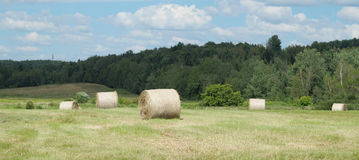 Farm hay bales country field meadow landscape agriculture panorama rural pasture Stock Images
