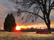 Farm hay feeder and pasture, trees, sunrise Royalty Free Stock Photo