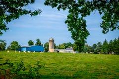 Passais Farm stock images