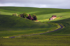 Farm On The Hill. A view of a farm house in the Palouse Royalty Free Stock Photography