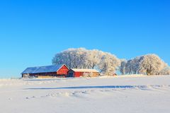 Farm on a hill. In a wintry landscape Stock Photo