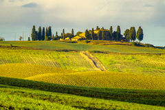 Farm on the hills of Tuscany Royalty Free Stock Image