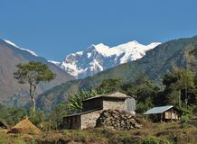 Farm in the Himalayas, Nepal Royalty Free Stock Photos