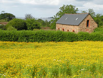 Farm House. Old farm house in the field of yellow flowers on the coast of France Stock Photos