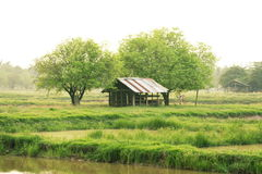 Farm house Stock Images