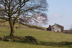 Farm house. And fields Stock Image