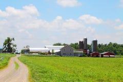 Farm House And Barns Royalty Free Stock Image