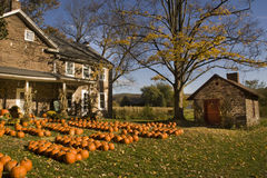 Farm house in Autumn Royalty Free Stock Image