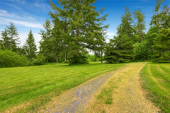 Farm house backyard with green lawn, fir trees, bushes Stock Photos
