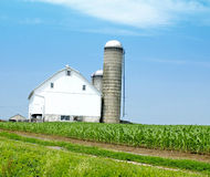 Farm house with corn field and Silo Stock Images