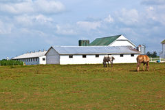 Farm house with field and silo Stock Image