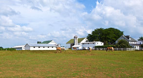 Farm house with field and silo. In beautiful landscape Stock Photos