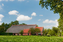 Farm house in landscape with potatoes Stock Images