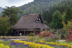 Farm house in Shirakawa Go, Japan. Gassho zukuri or traditional farm house in meadow with flowers in Shirakawa Go, Japan Stock Photography