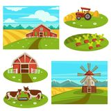 Farm household or farmer agriculture vector flat farming field and cattle pasture. Farm household or farmer agriculture. Vector flat farmer house and barn on royalty free illustration