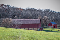 Farm Houses. In early fall Royalty Free Stock Photo
