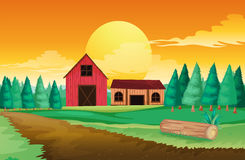 Farm houses near the pine trees Stock Photo