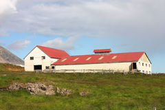 Farm in Iceland Stock Images
