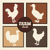 Farm icons design Royalty Free Stock Photos