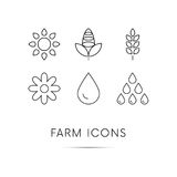 Farm icons set. Wheat. Corn. Water drop. Sunflower. Vector. Black thin line icons set on white background with shadow. Magnifier. Wheat icon. Corn icon. Water Stock Images