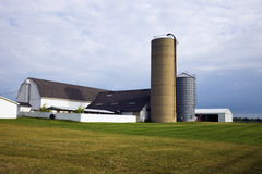 Farm in Illinois. Seen during cloudy summer morning Stock Photo