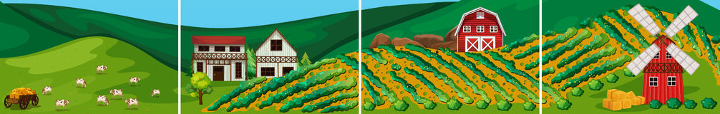 Farm. Illustration of a farm scenes with windmill Stock Photos