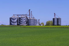 Farm industry. Grain bins with a crop field in front Royalty Free Stock Image