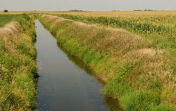 Farm irrigation channel Royalty Free Stock Photos