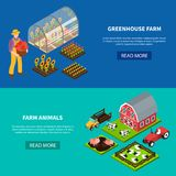 Farm Isometric Banners Set. Isomeric set of two horizontal banners with greenhouse and various domestic animals grazing on farm 3d isolated vector illustration Stock Images