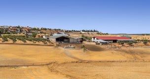 Farm of Jaen Royalty Free Stock Image