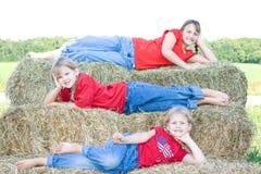 Farm kids. Stock Images