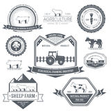 Farm label template of emblem element for your Stock Photography