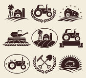 Farm labels set. Vector. Plant, harvest, design Royalty Free Stock Photos