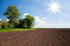 Farm land field Royalty Free Stock Photography