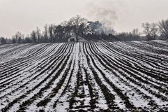 Farm land near the house in winter season. Farm land covered with snow in winter and beautiful house of the farmer near to it Stock Image