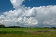 Farm land north of Churchbridge, Eastern Saskatchewan, Canada. Farm land north of Churchbridge, Eastern Saskatchewan, Canada royalty free stock photography