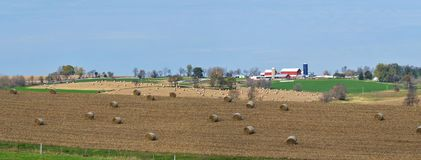 Farm land panorama with cornshock bundles. Midwest farm land harvest panorama Stock Image