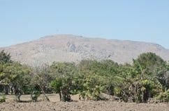 Farm land in Peru Royalty Free Stock Photos