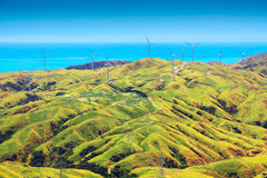 Farm land with the windfarm. Location: New Zealand, capital city Wellington. View from the SkyLine track and Mount KayKay, farm landscape royalty free stock image