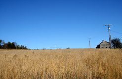 Farm Lands Royalty Free Stock Photo