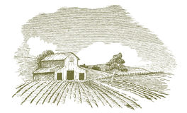 Farm Landscape with Barn. Pen and ink style illustration of a rural farm scene Royalty Free Stock Image