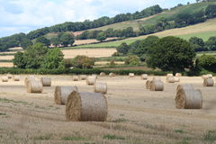 Farm Landscape in late summer. Hay bales arranged in a field awaiting collection with a background of green hills Royalty Free Stock Photo