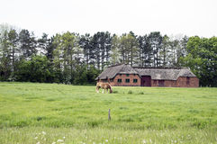 Farm Landscape Stock Photography