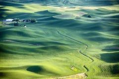 Farm Landscape In The Palouse Stock Image