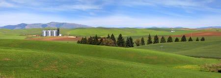Farm landscape Stock Photos
